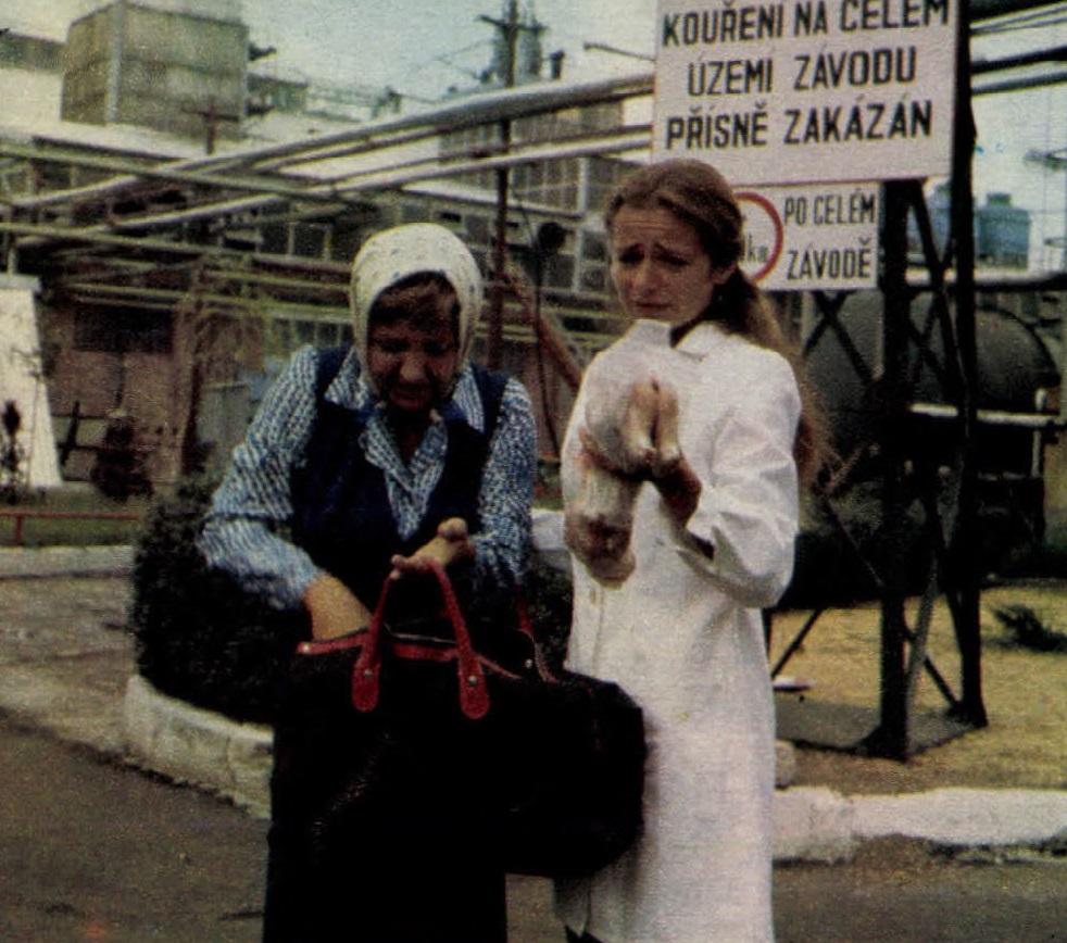 idokapszula_nb_i_1983_84_jugoszlavia_magyarorszag_vihar_a_lombikban_1.jpg