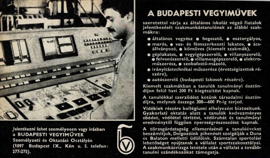 idokapszula_nb_i_1983_84_magyarorszag_dania_eb-selejtezo_allasajanlat.jpg