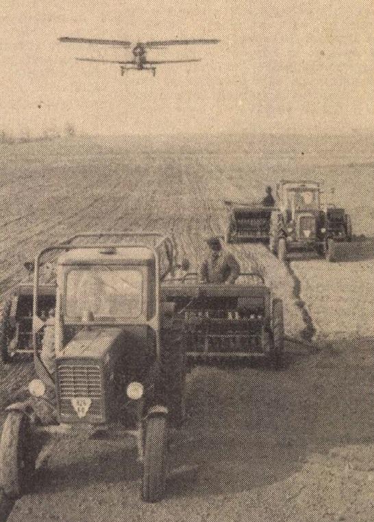 idokapszula_nb_i_1983_84_torokorszag_magyarorszag_godolloi_agrartudomanyi_egyetem.jpg
