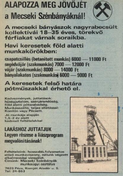 idokapszula_nb_i_1983_84_13_fordulo_allasajanlat_2.jpg