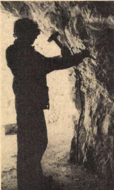 idokapszula_nb_i_1983_84_17_fordulo_szemlo_hegyi_barlang_2.jpg