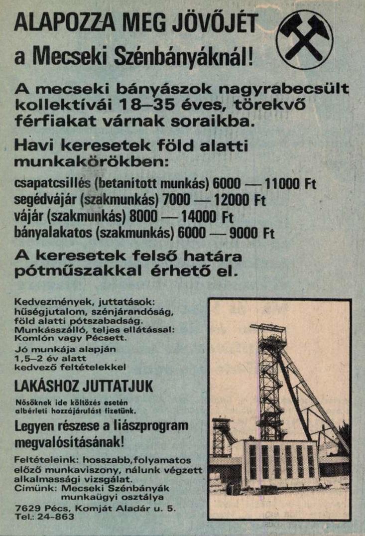 idokapszula_nb_i_1983_84_22_fordulo_allasajanlat_1.jpg