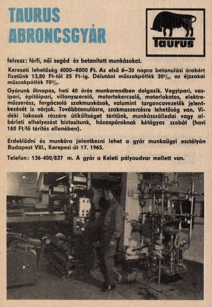 idokapszula_nb_i_1983_84_22_fordulo_allasajanlat_2.jpg