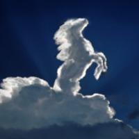 2014: Mi várható a kínai Fa-Ló évétől?