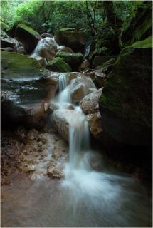 溪谷幽深長流水 Forrás: http://forestlife.info/Onair/012.htm