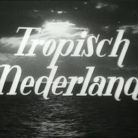 Tropisch Nederland