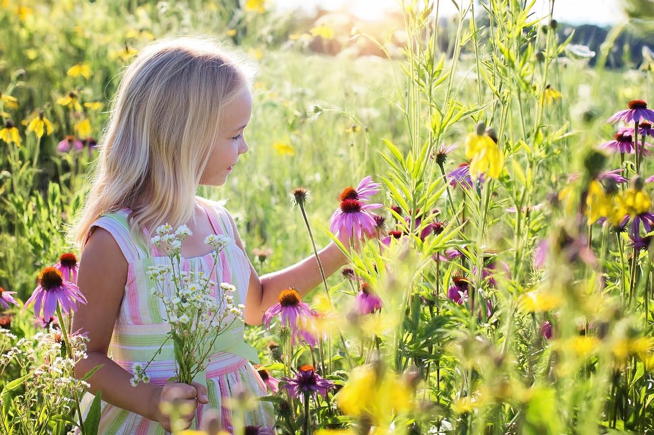 little-girl-2516578_1280.jpg