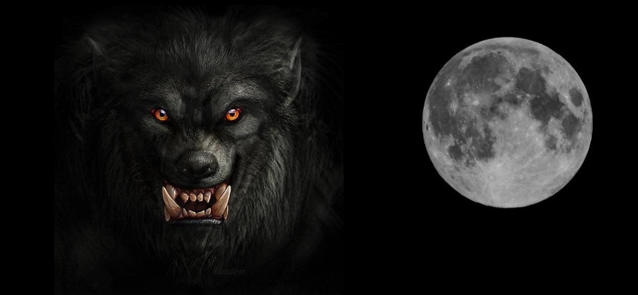 moon-1287246_1920.jpg