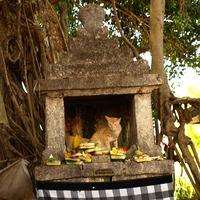 Indonézia VII - Bali - Bevezetés