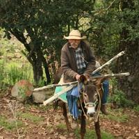 Mexikó XVII - Hogyan nyomjunk fel drogkereskedőket