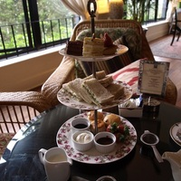 Malajzia III - Cameron Highlands