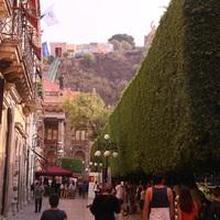Mexikó XII - Élet Guanajuatóban