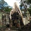 Kambodzsa II - Siem Reap - Angkor What?