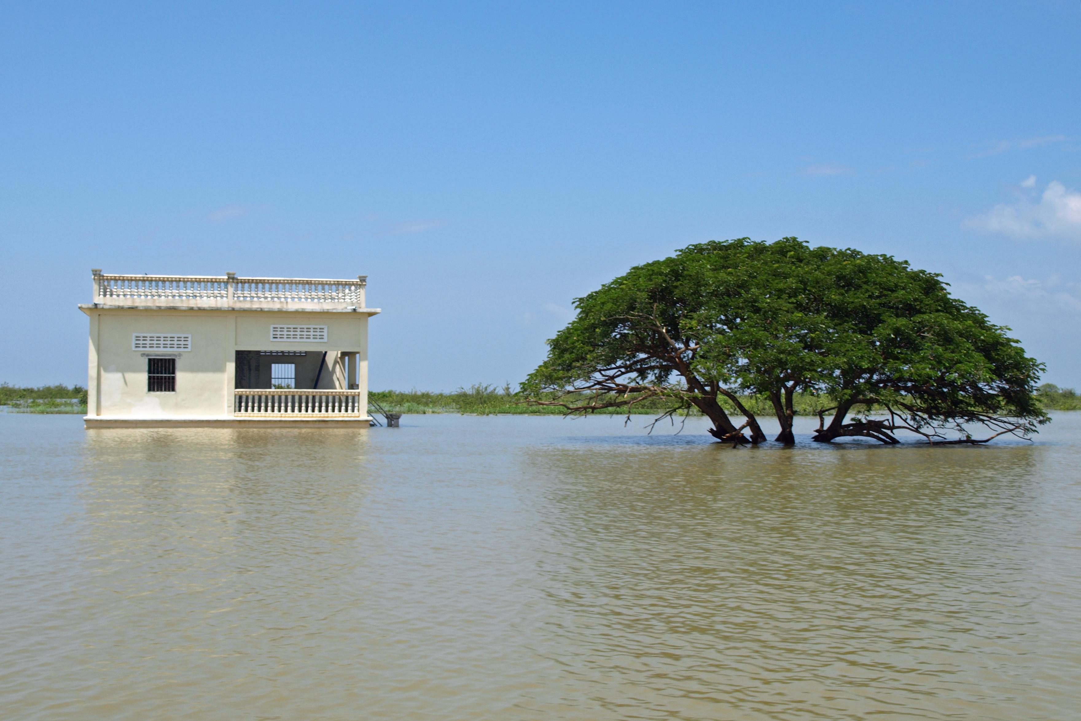 Kambodzsai áradás eredménye