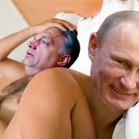 I love Putyin!