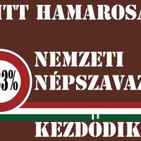 Szociális cigiszavazás 2014