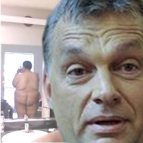 orbán selfie.jpg