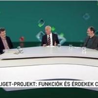 Liget-projekt: funkciók és érdekek csatája