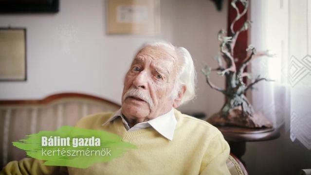 balint_gazda.JPG