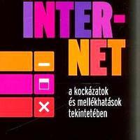 Talyigás Judit: Az internet a kockázatok és mellékhatások tekintetében