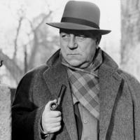 Georges Simenon: Maigret türelmes, Maigret New Yorkban, Maigret kudarcot vall