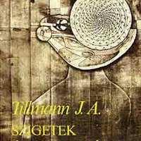Tillmann J. A. : Szigetek és szemhatárok – Későújkori kilátások