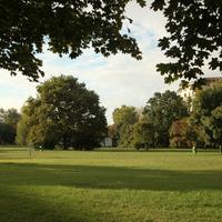 A Pillangó park ligete is maradhat liget?