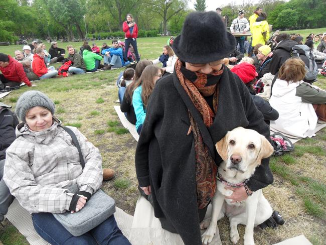 kutyas11039blog.jpg