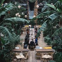 Tényleg őserdőt építettek egy belvárosi udvarban - Twentysix