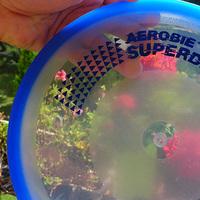 A legjobb vízparti játékok a Reflexshoptól