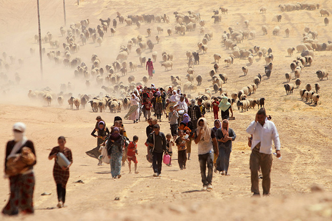 yazidi-refugees-flee-iraq.jpg