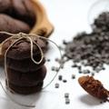 Dupla csokis-chilis keksz