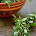 Fűszerkisokos - majoranna