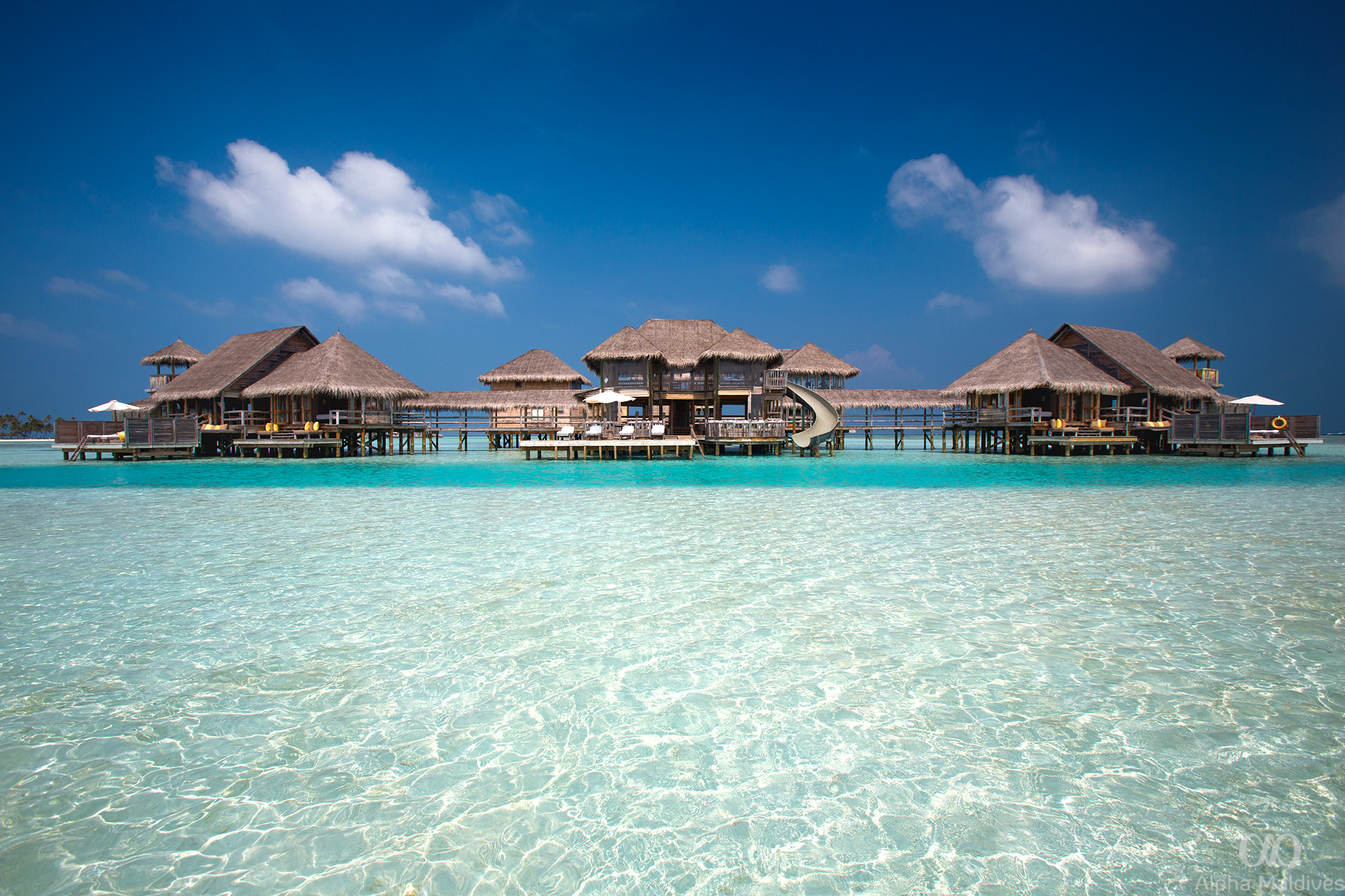 h_8_maldiv.jpg