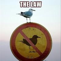 A kereskedelmi szabályozás által biztosított védelem