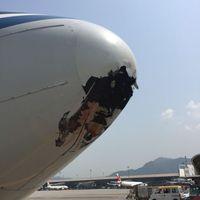 Lyukat ütött az utasszállítóba egy neki ütköző madár