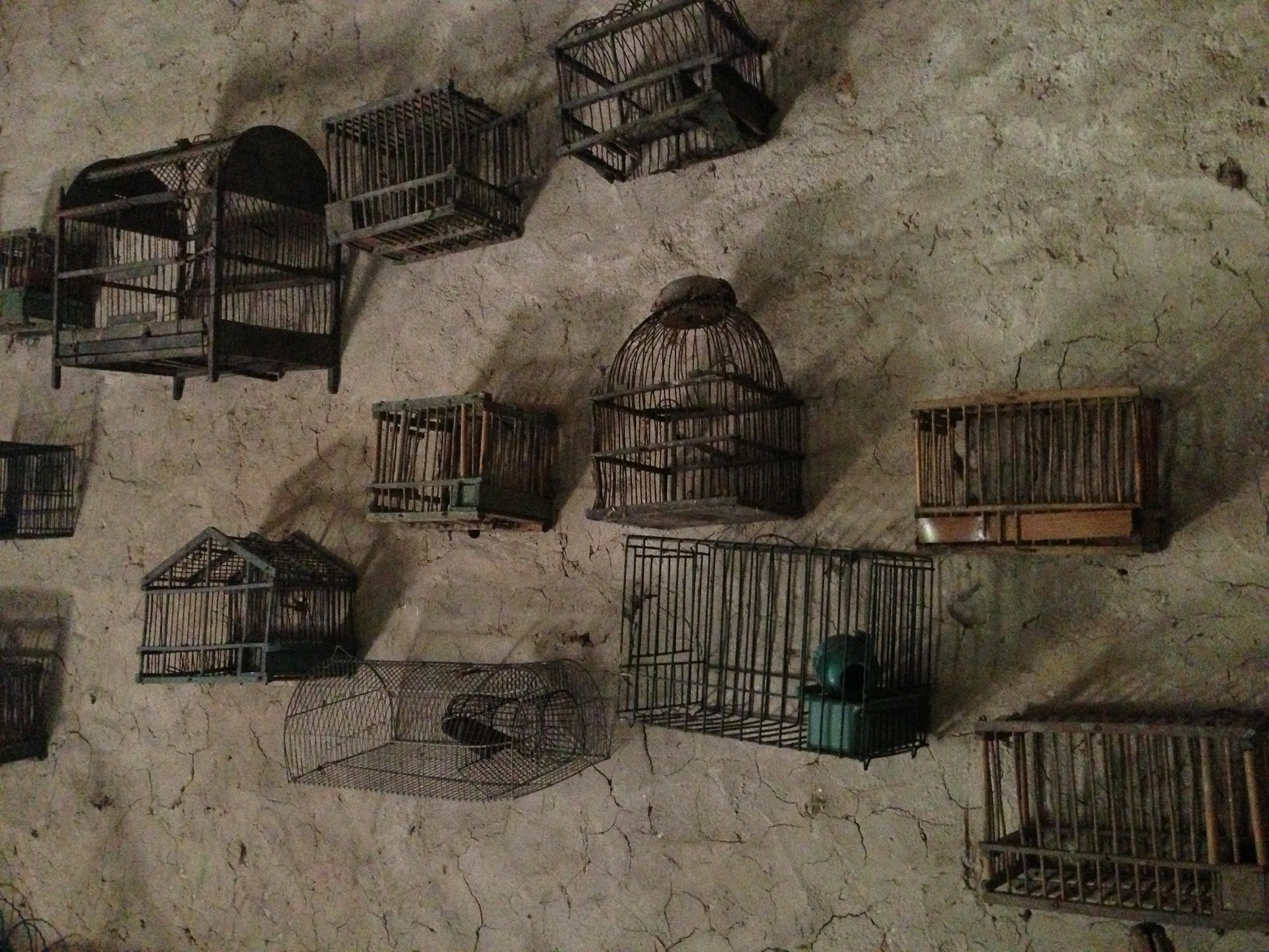 cages-363126_1920.jpg