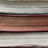 Zalaegerszeg oktatási profillal a nyilvánosságban