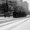 Képriport: budapesti havas város-képek