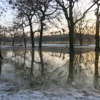 Általajvíz a Városligetben
