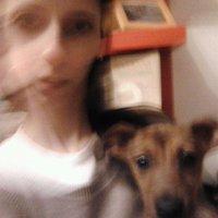 Önbecsülésem morzsái - 13. morzsa: Használt kutya – kíméletlen állapotban