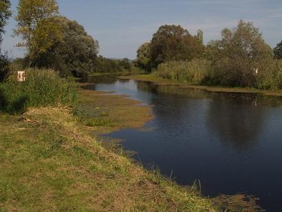 zala folyó