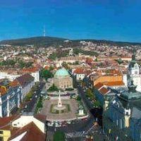 Pécs 2010: Mikor lövik már le a haldokló lovat?