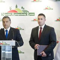 Megvédték a magyar földet is