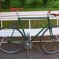 zöld SS