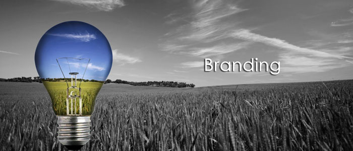 brand-management2.jpg