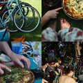 vega piknik