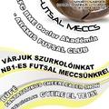 Futsal meccs