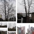 Fából is megárt a sok