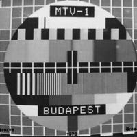 Magyar Televízió: mi az a közszolgálatiság?